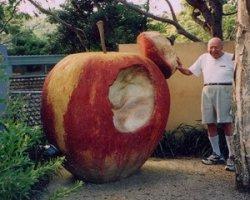 Самые большие яблоки в мире