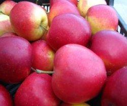 Яблоко клубника Redlove