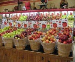 Страны импортеры яблок