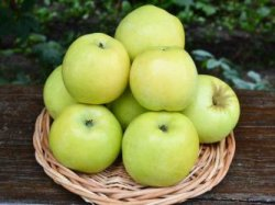 Яблоки на каждый день