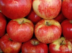 Выбираем яблоки для сушки