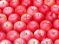 История слова «яблоко»