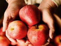 Яблоки при гипертонии
